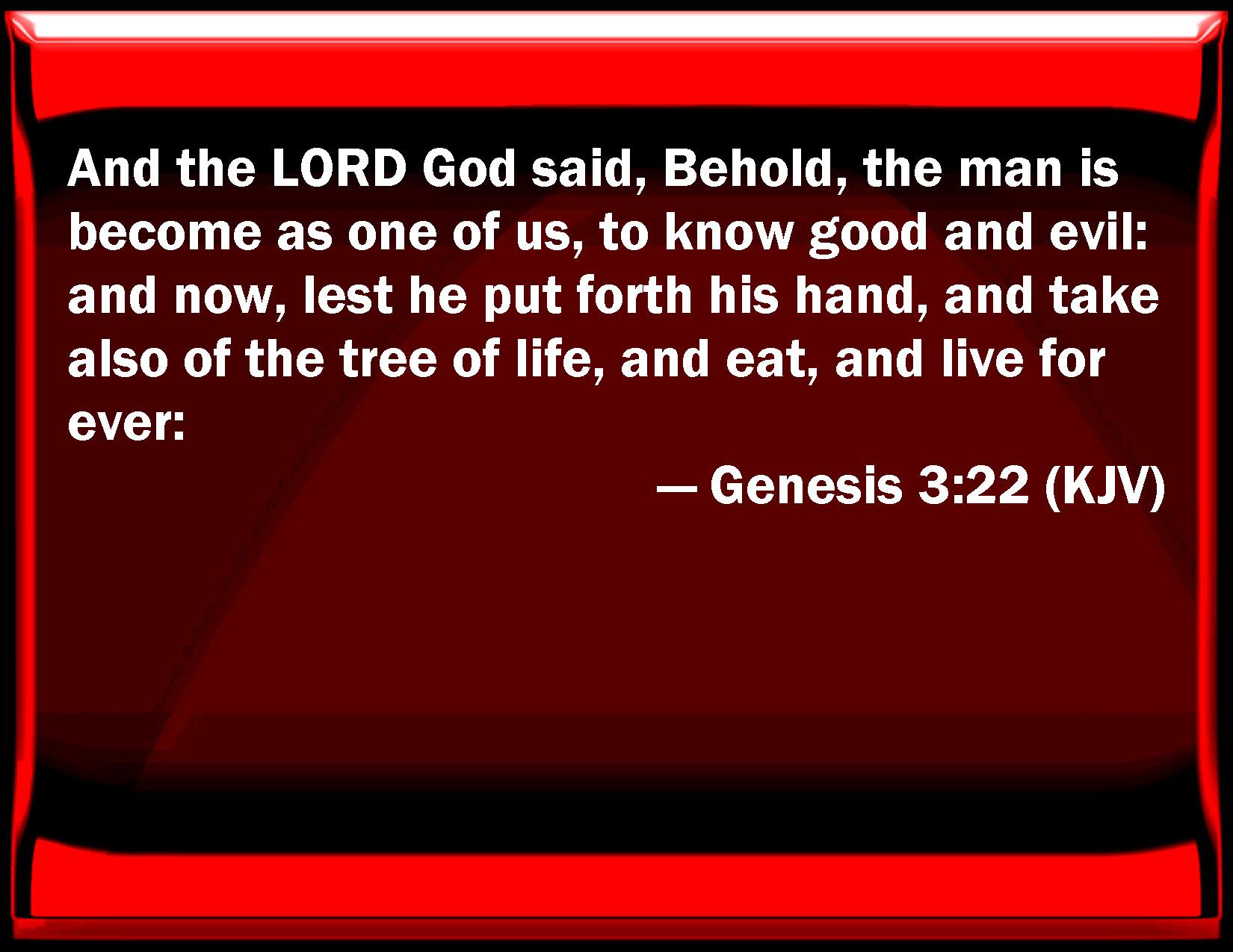Genesis 3 22