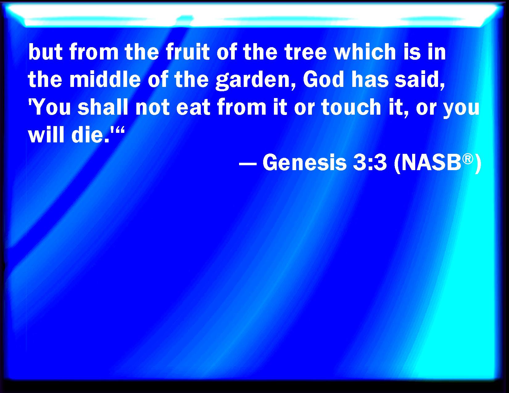 Genesis 3 3