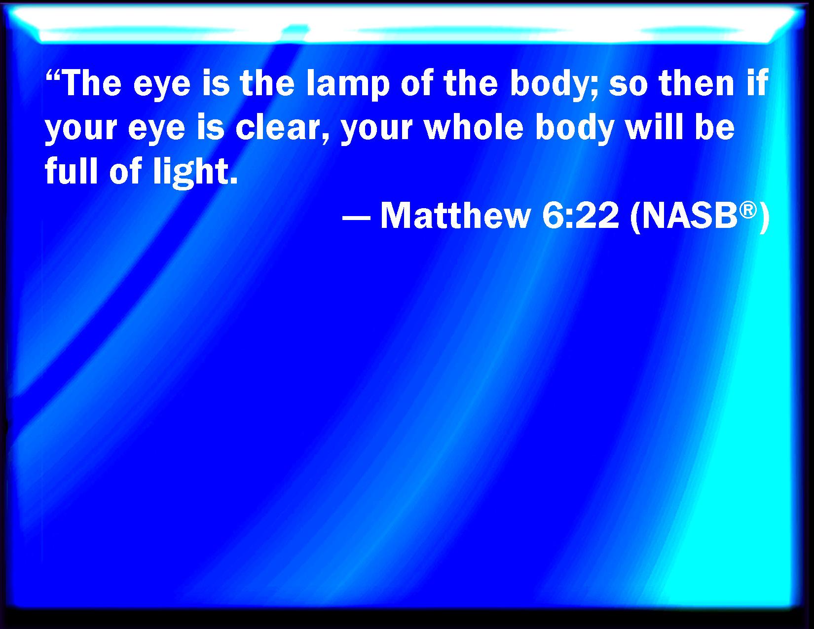THE NEW AMERICAN BIBLE SAINT JOSEPH EDITION CATHOLIC LARGE TYPE ILLUSTRATED RED