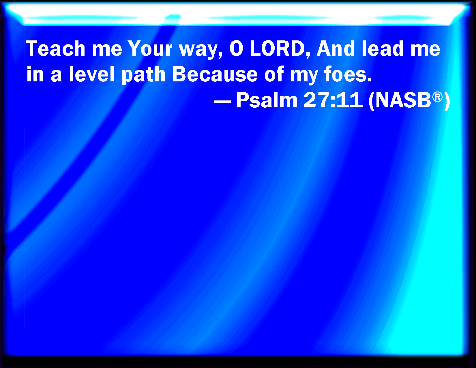 Psalm 27:11 Teach me your way, O LORD, and lead me in a