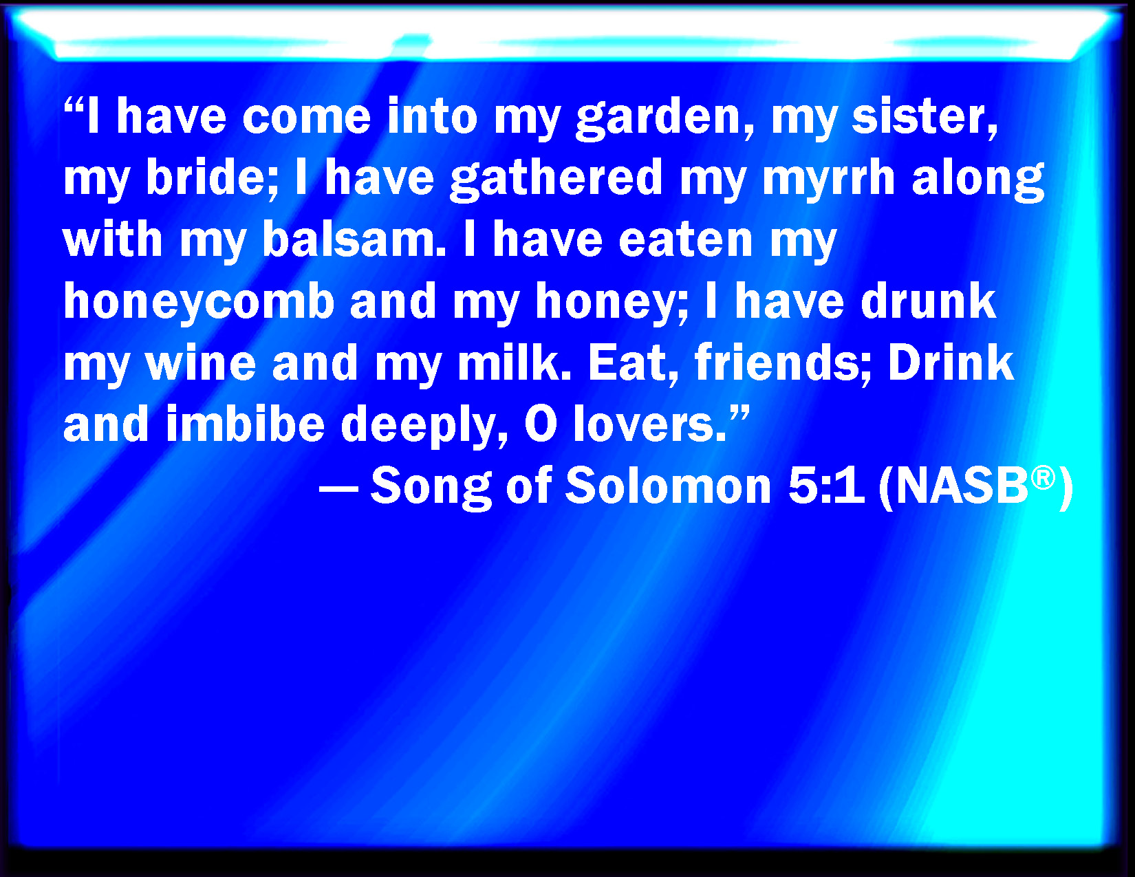 Bible song of solomon chapter 7 Part 4