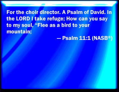 Bible Verse Powerpoint Slides For Psalm 11 1