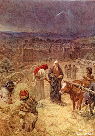 1 Chronicles 21 Bible Pictures David Buys Threshing Floor