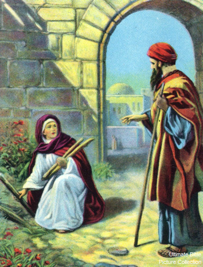 zarephath single women Jezebel: princess of sidon, queen of israel   both men and women presided over religious gatherings as priests and  let not a single one of them get away.