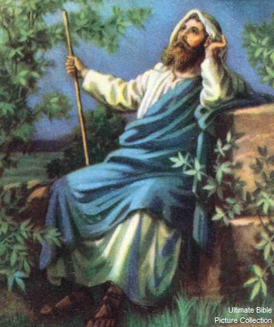 Hosea 12: Hosea