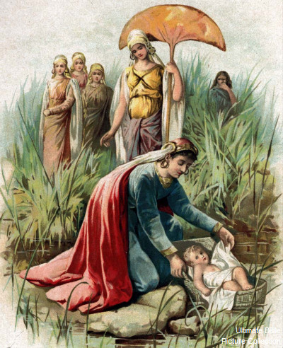 Exodus 2 bible pictures moses in a basket floating on the nile