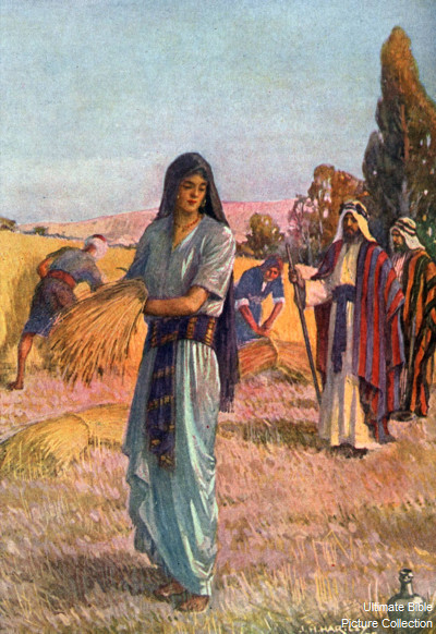 Ruth 2 Bible Pictures Ruth Gleaning In The Field