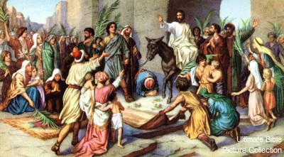 King David - Riding High