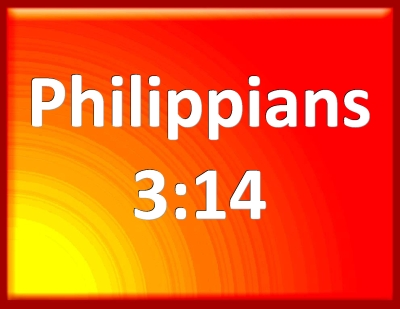 Bible Verse Powerpoint Slides for Philippians 3:14