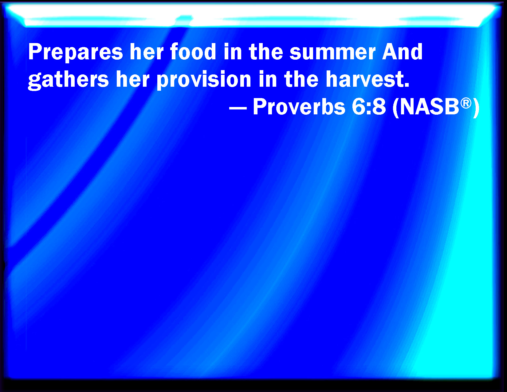 Proverbs 6:8 Provides her meat in the summer, and gathers